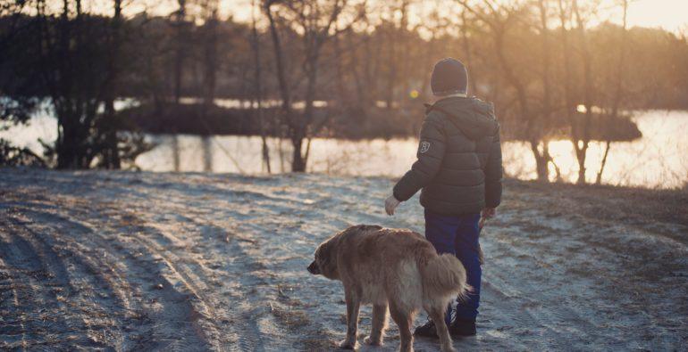 Doge store - Le quattro buone regole per far convivere pacificamente cani e bambini
